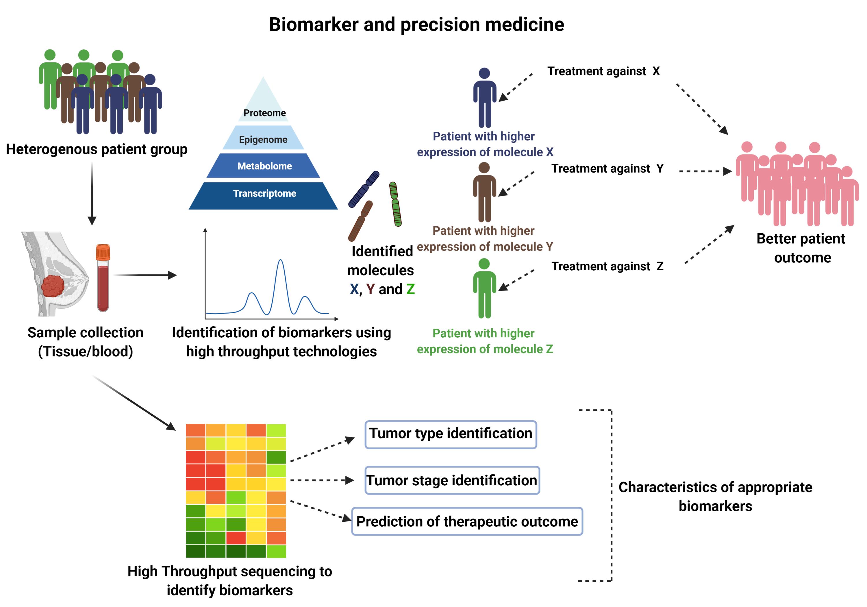 Figure 1. Schematic representation of the utilization of biomarker and personalized medicine in breast cancer therapy.