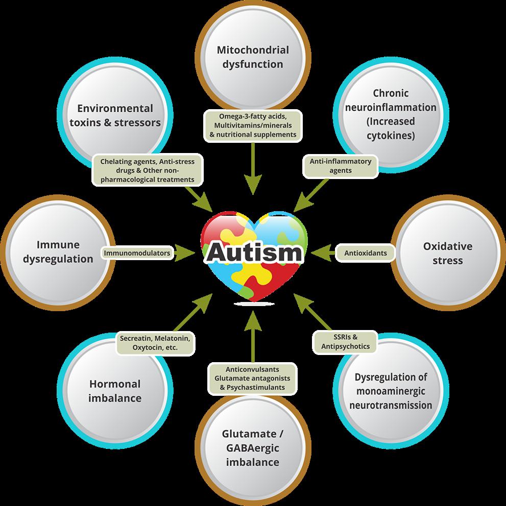 Figure 1. Risk factors associated with autism. (Source: https://www.neurogen.in/autism)