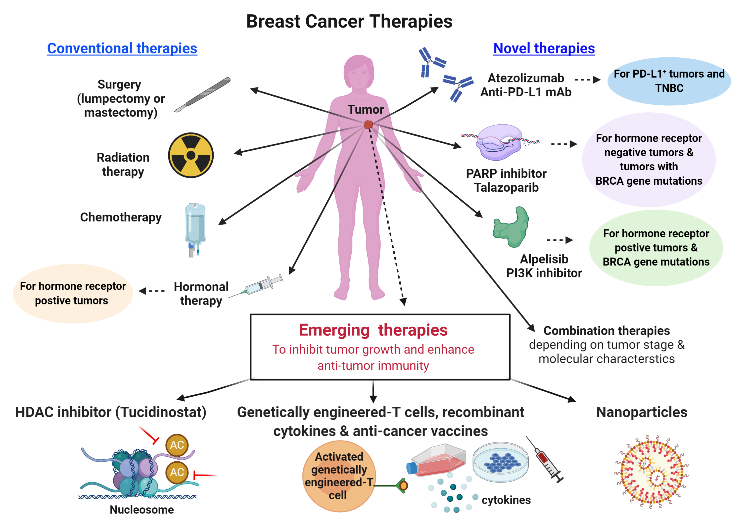 Figure 3. Currently available breast cancer therapies and proposed therapeutic strategies to improve clinical outcomes in patients who do not benefit from conventional therapies. TNBC, triple negative breast cancer; BRCA, BReast CAncer gene; PARP, poly (ADP-ribose) polymerase; PI3K, phosphatidylinositol 3-kinase; PD-L1, programmed cell death-ligand 1; HDAC, Histone deacetylase.