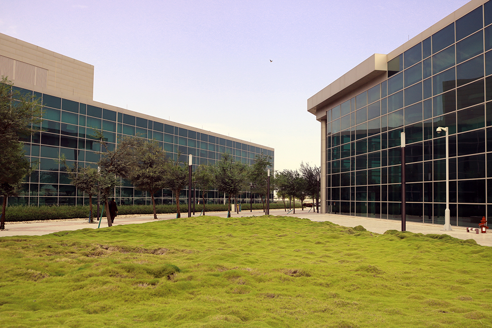 QCRI to Host Research-Driven Workshop on
