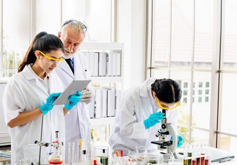 سلسلة محاضرات معهد قطر لبحوث الطب الحيوي: دليل للباحثين المبتدئين في مجالات العلوم والتكنولوجيا والهندسة والرياضيات