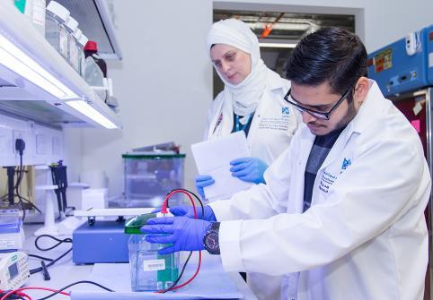 HBKU's Qatar Biomedical Research Institute Announces 6th Summer Research Program