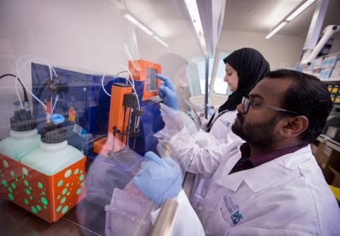 في جامعة حمد بن خليفة أبحاث متقدمة وناجعة في مكافحة السرطان