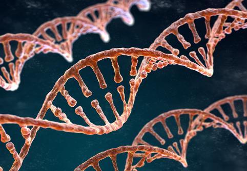 علم الجينوم في الممارسة السريرية
