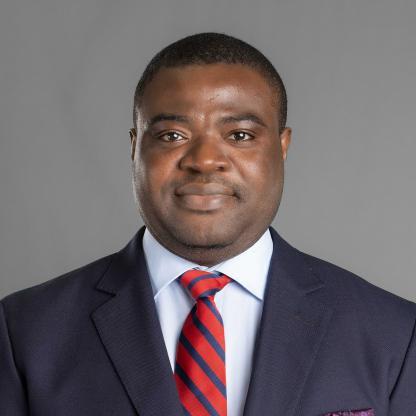 Damilola S. Olawuyi