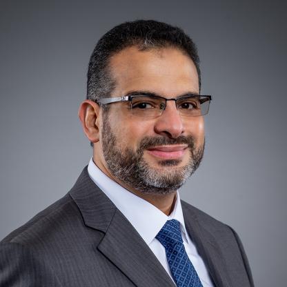 Ashraf Aboulnaga