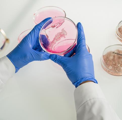 مساعي نحو الوصول لمسار فعال لمكافحة السرطان رؤية مقدمة من معهد قطر لبحوث الطب الحيوي