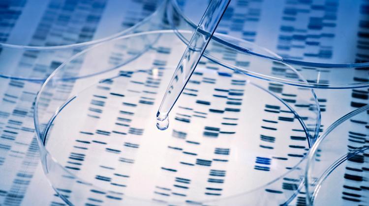 الطب الدقيق والجينوم الوظيفي