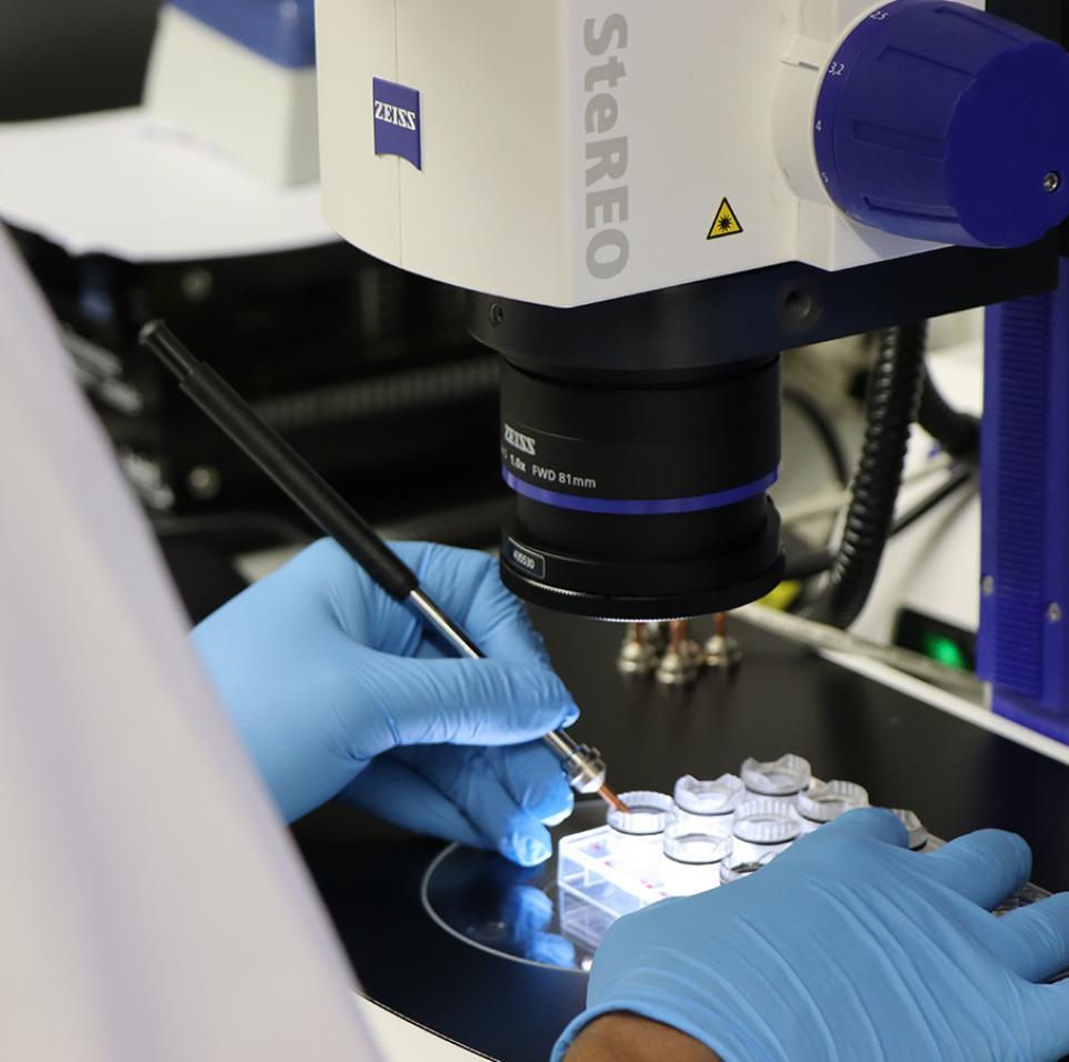 من البحوث النظرية إلى التطبيقات العملية وصناعة الأثر: معهد قطر لبحوث الطب الحيوي يقدم أكبر عدد من طلبات تسجيل الاختراعات في عام 2020